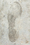 Shoe print in concrete background. Close up shoe print in concrete background Stock Images