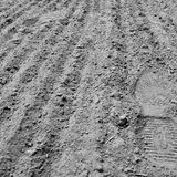 The Shoe print. In the fresh soil Stock Photography