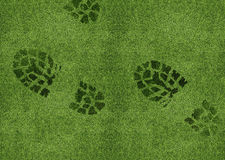 Shoe print on green grassland.  Royalty Free Stock Images