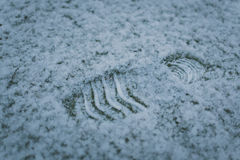 Shoe Print on Snow Royalty Free Stock Images