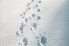 Shoe prints in the snow Royalty Free Stock Photography