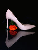 Shoe and rose Stock Photography