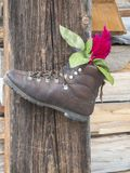 Shoe with rose on post Royalty Free Stock Photo