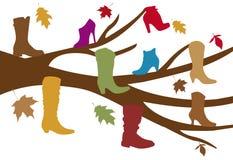 Shoe tree. Autumn shoe tree with falling leaves Stock Photo