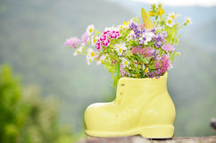 Shoe vase with colorful forest flowers Royalty Free Stock Images