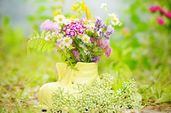 Shoe vase with colorful forest flowers Stock Photography