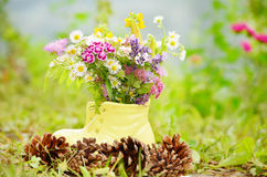 Shoe vase with colorful forest flowers Royalty Free Stock Photo