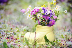 Shoe vase with colorful forest flowers Royalty Free Stock Photos