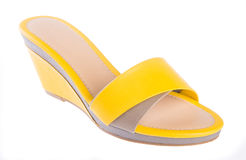 Shoe. woman sandal on a background Royalty Free Stock Photo