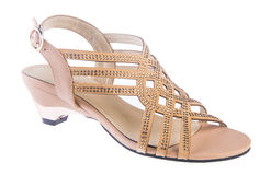 Shoe. woman sandal on a background Royalty Free Stock Images