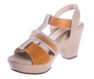 Shoe. woman sandal on a background. Shoe. woman sandal on background Royalty Free Stock Photos