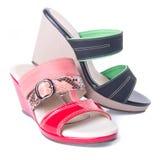 Shoe. woman sandal on a background. Shoe. woman sandal on background Stock Image