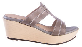 Shoe. woman sandal on a background. Shoe. woman sandal on background Stock Photo
