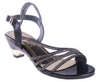 Shoe. woman sandal on a background. Shoe. woman sandal on background Stock Photography