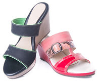 Shoe. woman sandal on a background. Shoe. woman sandal on background Stock Images