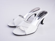 Shoe or woman sandal on a background. Shoe or woman sandal on a background Royalty Free Stock Images