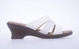 Shoe. woman sandal on background. woman sandal on a background. Shoe. woman sandal on background. woman sandal on a background Royalty Free Stock Photos