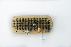 Shoebrush mit den Männern Miniatur auf weißem Hintergrund Lizenzfreies Stockfoto