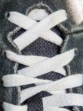 shoelace Arkivbild