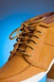 shoelace Arkivfoton