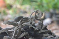 shoelace Zdjęcie Royalty Free