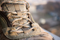Shoelaces close-up Royalty Free Stock Photo