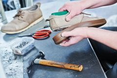 Shoemaker repair shoe. Glueing the sole for male footwear. In workshop Stock Photography