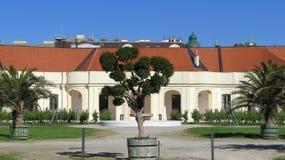 Shoenbrunn宫殿维也纳 免版税图库摄影