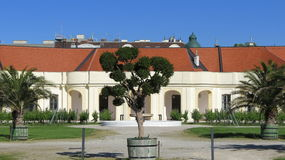 Shoenbrunn pałac Wiedeń Fotografia Royalty Free