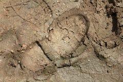Shoeprint dans la boue Image stock