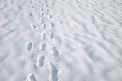 Shoeprints dans la neige Photo stock