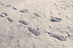 Shoeprints en la nieve Foto de archivo