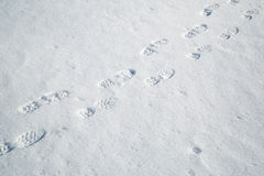 Shoeprints in the snow Stock Photos