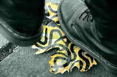 Shoes. Standing on the painted autumn leaf royalty free stock images