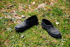 Shoes. A pair of black shoes on grass Royalty Free Stock Photography