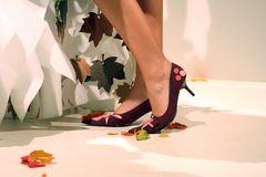 Shoes. Shoe,Fashion,woman,legs,foot Royalty Free Stock Photography