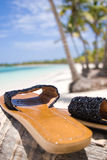 Shoes. On the palm tree of Bavaro beach Royalty Free Stock Images