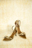 Shoes. Pair of lady's leather shoes royalty free stock image
