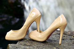 Free Shoes A Pair Of Pumps Stock Images - 25133054