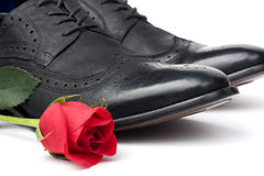 Shoes And Rose Stock Image