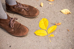 Shoes and autumn leaves Stock Photo