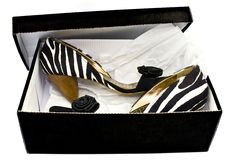 Shoes in a box. Fashion shoes in a box stock image