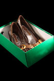 Shoes in the box. Woman Shoes in the box Stock Photo