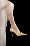 Shoes of the bride. Beautiful modelling magnificent shoes for the bride Royalty Free Stock Photo