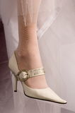 Shoes of the bride. Beautiful modelling magnificent shoes for the bride Stock Photos