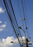 Shoes on cables and wires. Shoe tossing, also named shoefiti is the practice of throwing sneakers or other kind of shoes which have been tied together by their Stock Images
