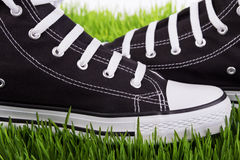 Shoes closeup on green grass Royalty Free Stock Images