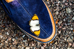 Shoes and the colour pattern from the butterflu Royalty Free Stock Photo