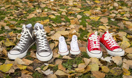 Shoes in father big, mother medium and son or daughter small kid size in family love concept. Three pair of shoes in father big, mother medium and son or Stock Photos