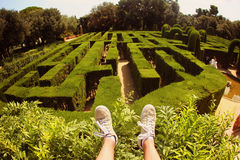 Shoes in front green maze garden. Feet in sneakers with a grass labyrinth in background maze sunny day Stock Image